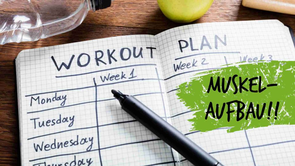 Trainingsplanung im Krafttraining: Muskelaufbau